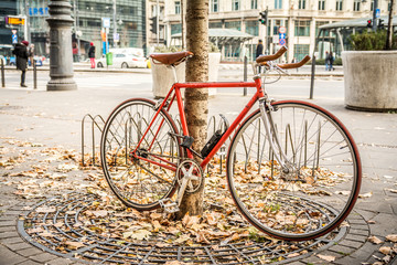 urban bike standing at tree on autumn season