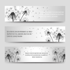 Monochromic horizontal banners set with dandelions and seeds. Vector illustration