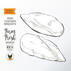 chicken breast vector