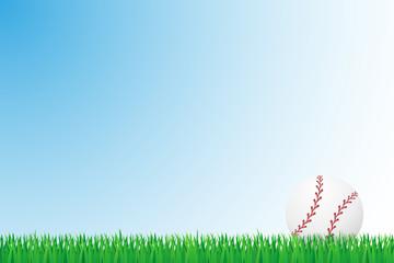 baseball grass field vector illustration