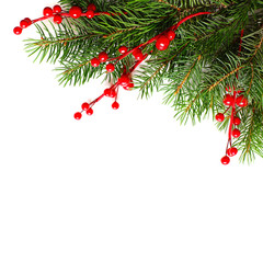 Christmas Background with Xmas Tree Twig and Red Berries. Abstract Christmas or New Year Border for Xmas Card on White Background