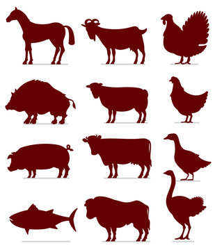Icons of Meat Animals