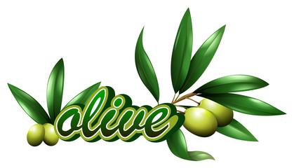 Font design for word olive