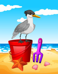 Seagull standing on red bucket