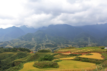 Rice terraces and the mist on the hill ,Sapa Veitnam