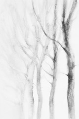 white trees winter watercolor