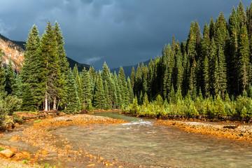 Mineral Creek at San Juan Nat'l Forest, CO