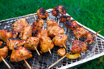 chicken barbecue on the nature of the metal grill stand on the green grass on a bright sunny day
