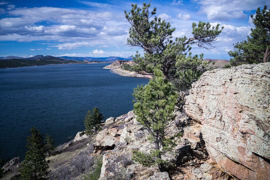 """""""Carter Lake Pine Tree"""""""