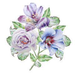 Floral card with flowers. Alstroemeria. Rose. Watercolor illustration.