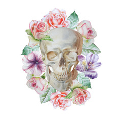 Skull and flowers. Watercolor illustration.