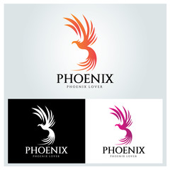 Phoenix logo design template ,Vector illustration
