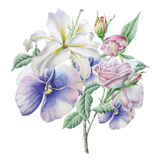 Floral card with flowers. Lilia. Pansies. Rose. Watercolor illustration.