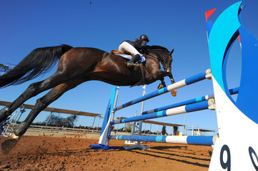 The bottom view on the rider on horse jumping over a hurdle during the equestrian event
