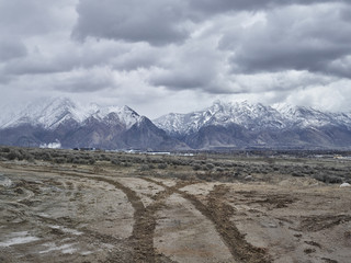 Tracks in mud, mountains in background, Utah