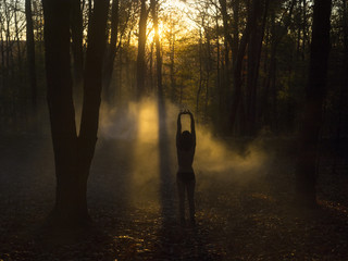 Woman standing in forest, at sunrise, stretching, rear view