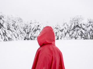 Person in red coat looking at snow covered trees