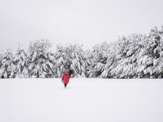 Person in red coat walking through snow in winter