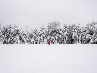 Person in red coat by snow covered trees in winter