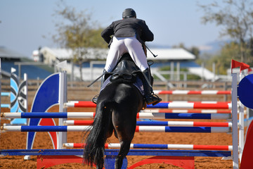 The rear view on the rider on horse jumping over a hurdle during the equestrian event