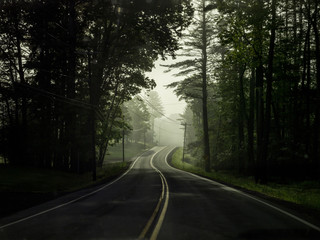 Forest road with misty distance
