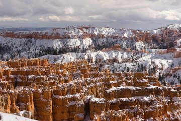 Bryce Canyon National Park Utah USA North America