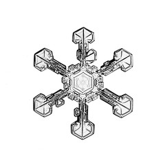 natural snowflake photo isolated on a background