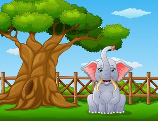 Animal elephant beside a tree inside the fence