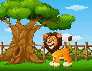 Animal lion standing beside a tree inside the fence