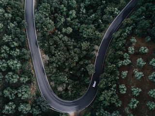 Aerial view of a road crossing a forest