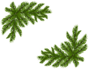 Two green spruce branches realistic. Placed in the corners. Fir branches. Isolated on white background. Christmas illustration