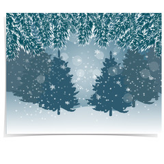 New Year card. Blue, realistic fir branches with snow in the cold winter forest in the background. Christmas illustration