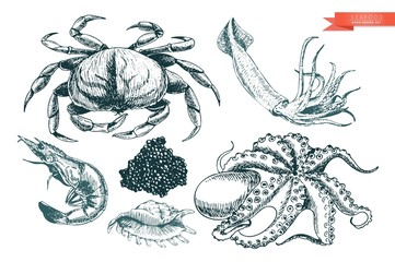 Vector hand drawn set of seafood icons. Crab, shrimp, squid, octopus, caviar and oyster. Engraved art.