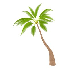 Sloped palm tree icon. Cartoon illustration of sloped palm tree vector icon for web