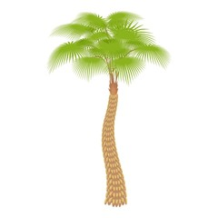 Big palm tree icon. Cartoon illustration of big palm tree vector icon for web
