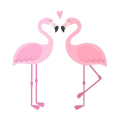 Vector pink flamingos illustration. Couple of tropical and exotic birds. Two cartoon flamingo on white background set. Cute character. Flat design. Isolated on white background.