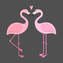 Vector pink flamingos illustration. Couple of tropical and exotic birds. Two cartoon flamingo on white background set. Cute character. Flat design.