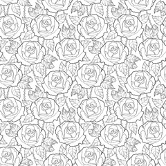 Vector seamless pattern with outline rose flower, stems and leaves in black on the white background. Elegance floral background with roses in contour style for summer design and coloring book.