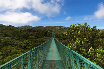 Suspended bridge over the canopy of the trees in Monteverde, Costa Rica, Central America