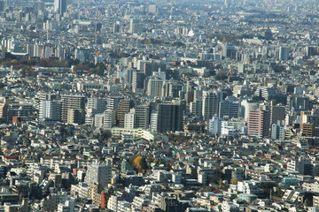capital city of Japan view with Shinjuku districts
