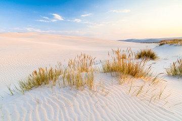 beautiful view of the coastal dunes Wall mural