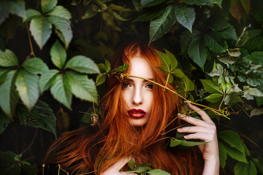 the red-haired girl in the leaves of wild grapes