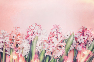 Wall Mural - Lovely Hyacinths flowers  with bokeh on pastel pink background, top view. Springtime and gardening concept