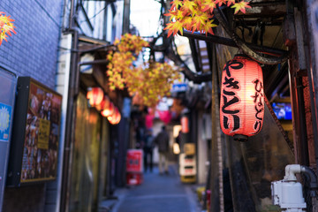 Spoed Fotobehang Tokio Restaurant street decorated with red leaf in Tokyo