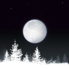 Snow Winter Night Background