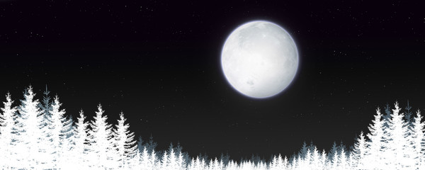 Magic Winter Night Landscape
