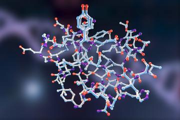Molecular model of insulin molecule, 3D illustration