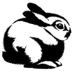 black and white linear paint draw rabbit illustration