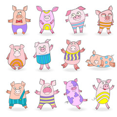 Set of funny colored pigs on a white background isolated