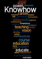 Knowhow, word cloud concept 8